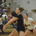 Volleyball: Huskies Handle Harvard [PHOTOS]