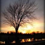 Photography Spotlight [March 21, 2012]