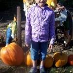 Pumpkin Patch in Henderson Opening this Weekend