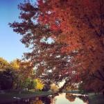 Photography Spotlight [October 22, 2014]