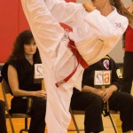 Martial Arts Tournament in Henderson Tomorrow